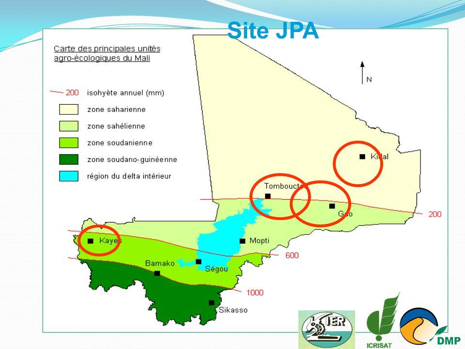 Jardin PotagerAfricain (JPA) Superficie de 500 m² par paysan :  Vitro plants de palmiers dattiers (variété Medjool)  Jujubiers greffés(Gola,seb et Umuran) dont 3/variété  Cultures maraîchères  système d'irrigation goutte à goutte