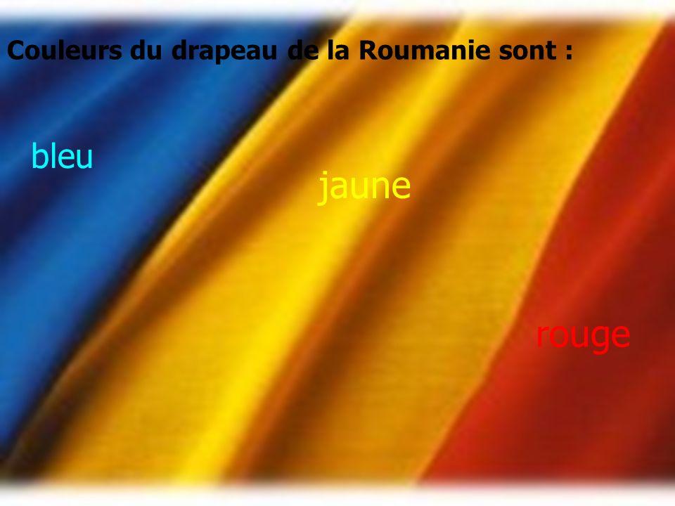 Le bleu est la foi pour le pays dans un port Le jaune est notre terre Rouge signifie le sang