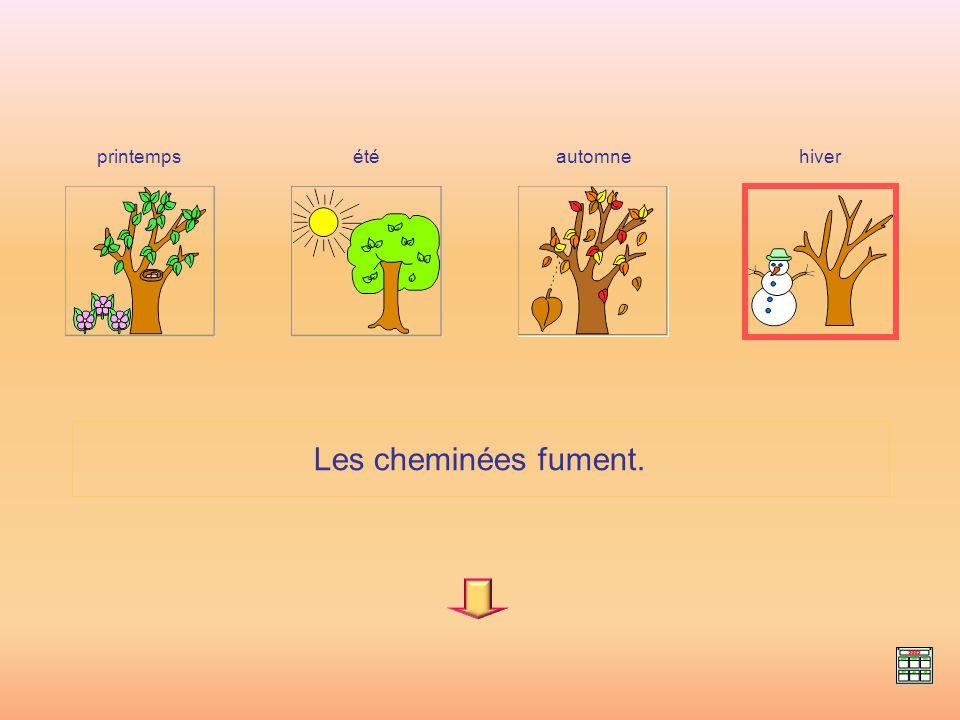 Les feuilles des arbres changent de couleur. hiverprintempsétéautomne