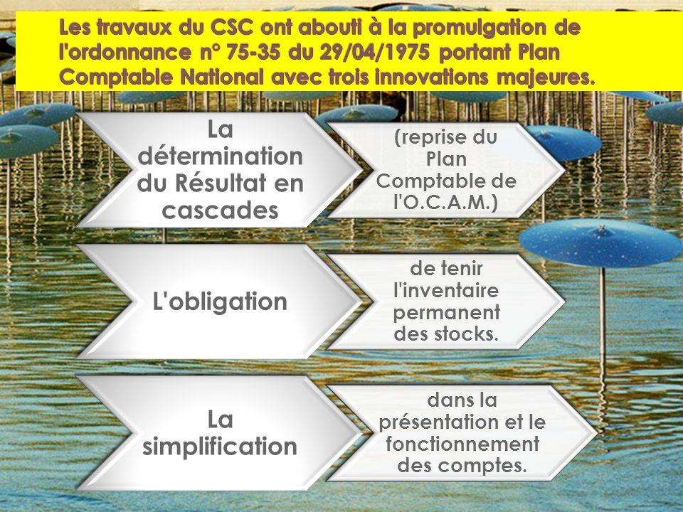 La détermination du Résultat en cascades (reprise du Plan Comptable de l O.C.A.M.) L obligation de tenir l inventaire permanent des stocks.