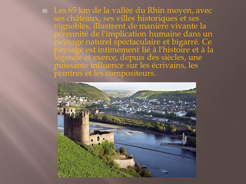  Les 65 km de la vallée du Rhin moyen, avec ses châteaux, ses villes historiques et ses vignobles, illustrent de manière vivante la pérennité de l'im