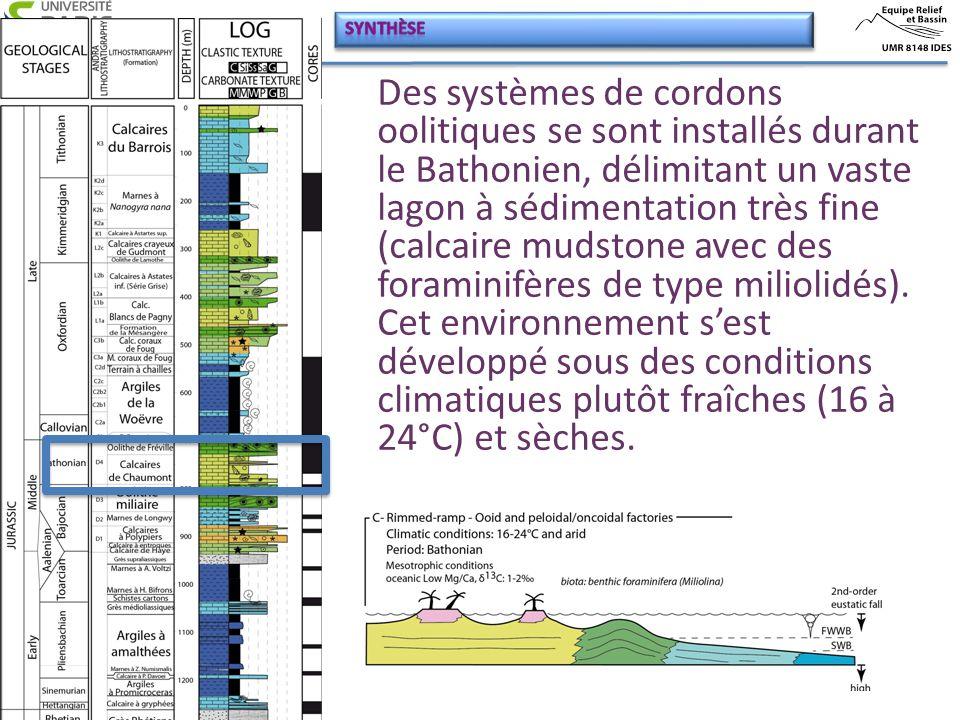 Des systèmes de cordons oolitiques se sont installés durant le Bathonien, délimitant un vaste lagon à sédimentation très fine (calcaire mudstone avec