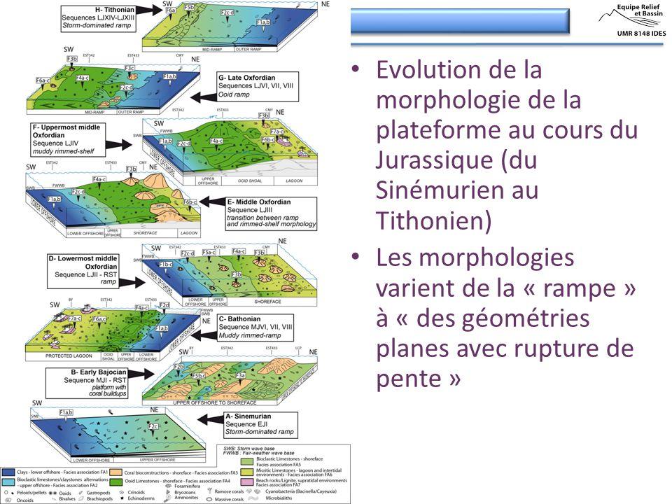 Evolution de la morphologie de la plateforme au cours du Jurassique (du Sinémurien au Tithonien) Les morphologies varient de la « rampe » à « des géom