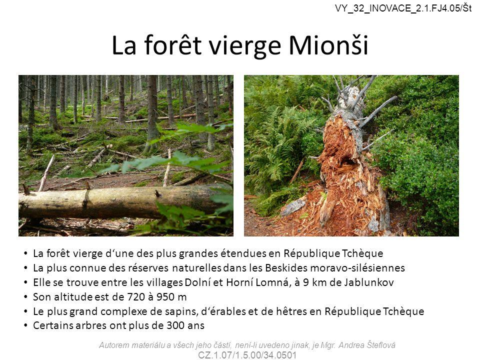 La forêt vierge Mionši VY_32_INOVACE_2.1.FJ4.05/Št Autorem materiálu a všech jeho částí, není-li uvedeno jinak, je Mgr.
