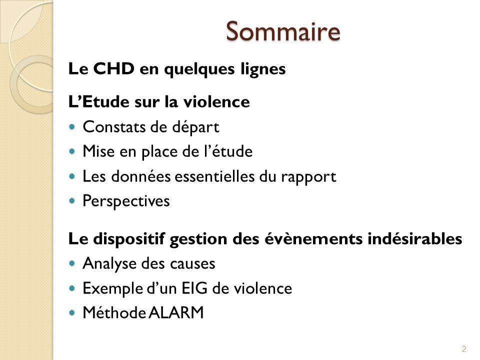 Sommaire 2 Le CHD en quelques lignes L'Etude sur la violence Constats de départ Mise en place de l'étude Les données essentielles du rapport Perspecti