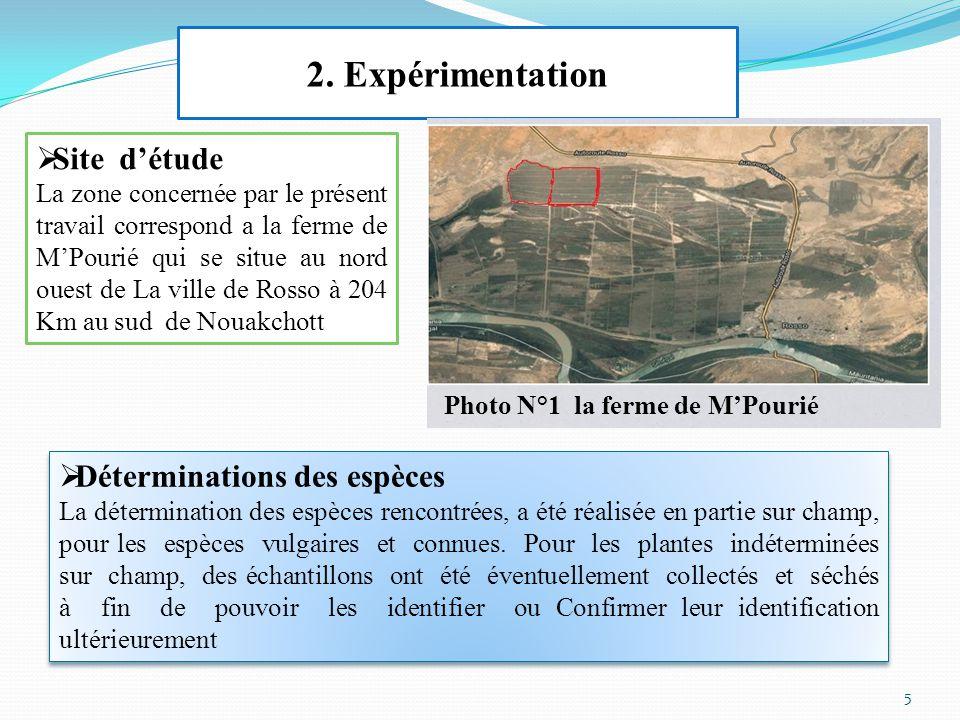 2. Expérimentation  Site d'étude La zone concernée par le présent travail correspond a la ferme de M'Pourié qui se situe au nord ouest de La ville de