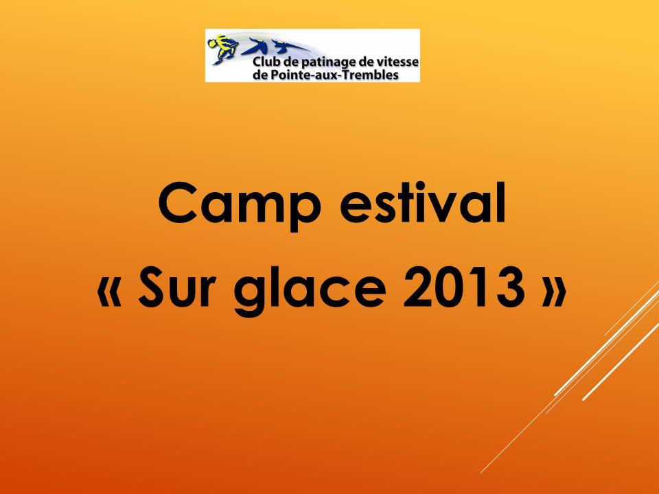 Camp estival « Sur glace 2013 »