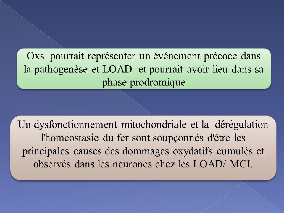 Oxs pourrait représenter un événement précoce dans la pathogenèse et LOAD et pourrait avoir lieu dans sa phase prodromique Un dysfonctionnement mitochondriale et la dérégulation l homéostasie du fer sont soupçonnés d être les principales causes des dommages oxydatifs cumulés et observés dans les neurones chez les LOAD/ MCI.