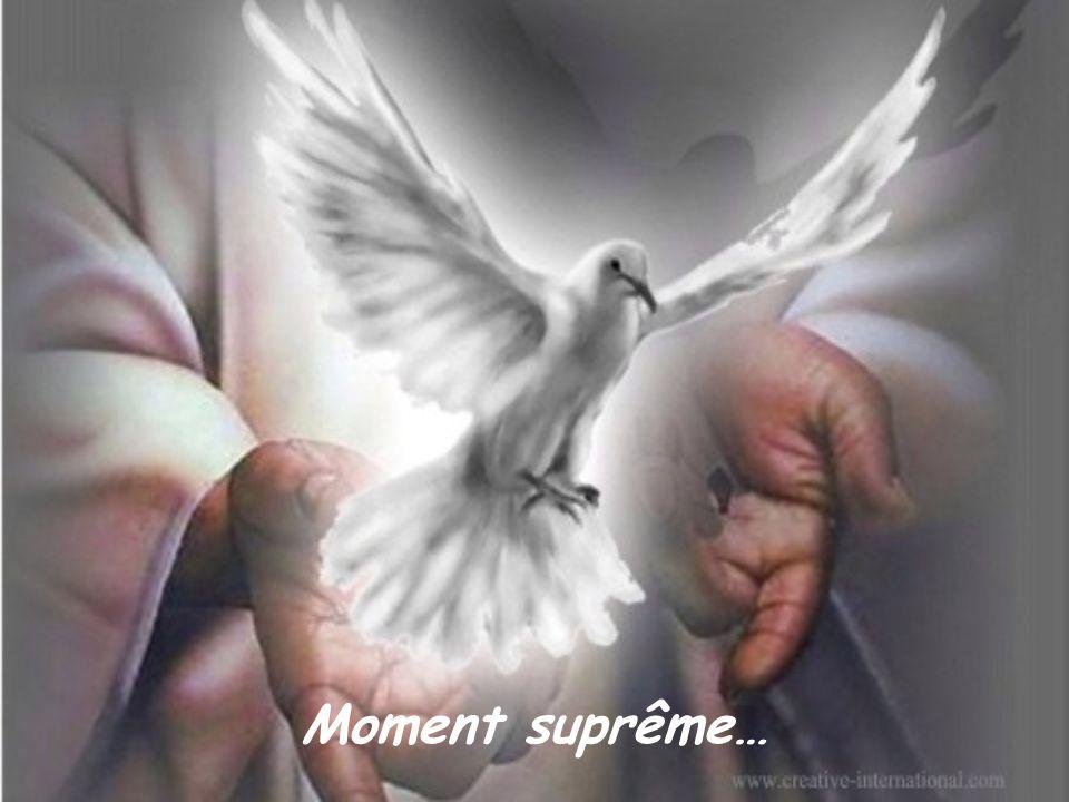 Moment suprême…