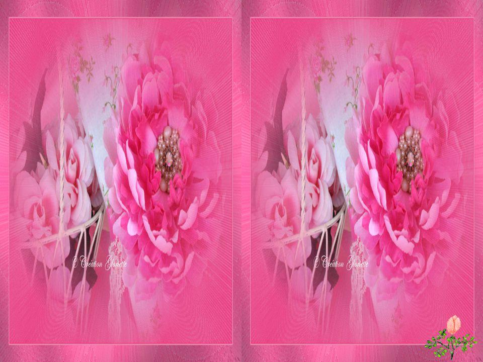 La Camélia est romantique Son parfum est plaisant Les fleurs sont uniques Même les fleurs des champs La vie avec sa générosité M'invite à venir partager Tous ses bonheurs d'été Je danse dans mes pensées..