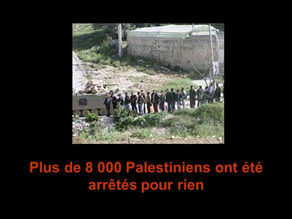 Plus de 8 000 Palestiniens ont été arrêtés pour rien