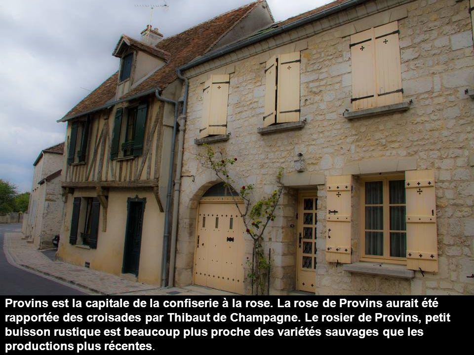 Provins fut au Moyen Âge l une des villes abritant les plus grandes foires de Champagne.
