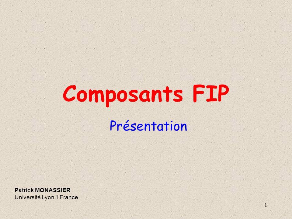 1 Composants FIP Présentation Patrick MONASSIER Université Lyon 1 France