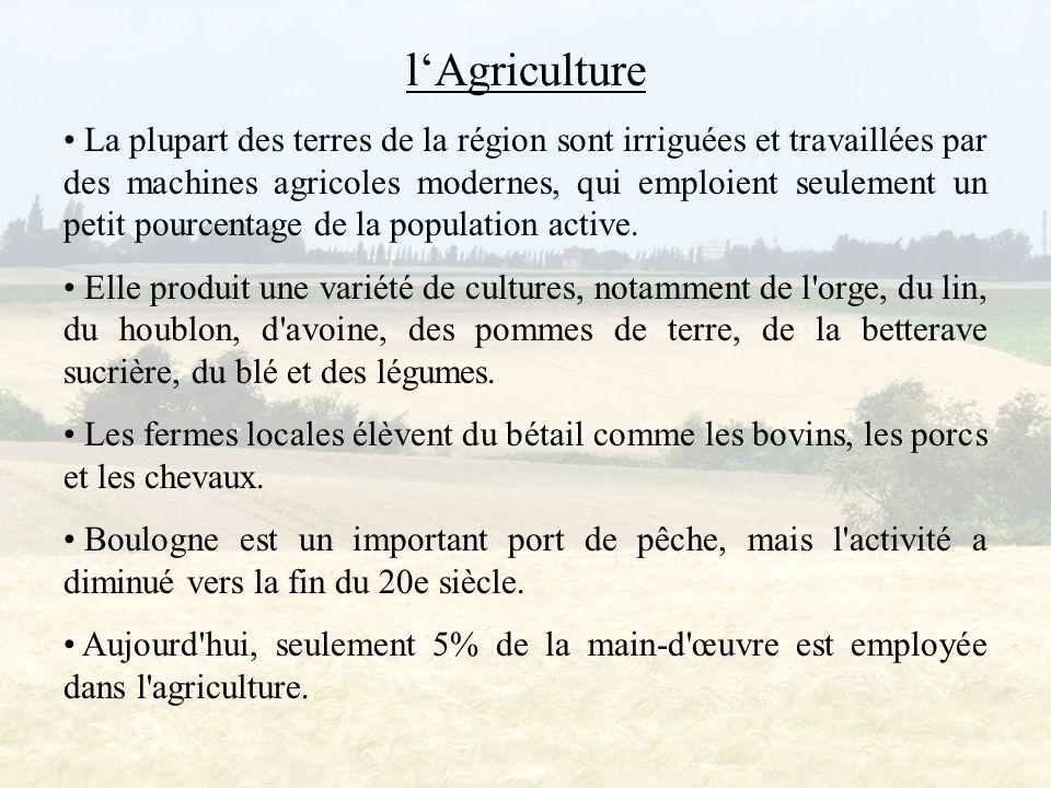 l'Agriculture La plupart des terres de la région sont irriguées et travaillées par des machines agricoles modernes, qui emploient seulement un petit pourcentage de la population active.