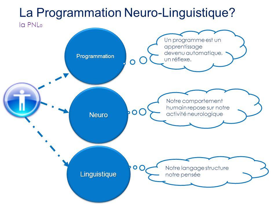 Sommaire : Présentation de la PNL Le modèle de communication La perception Les étapes de la communication Les principaux outils de la PNL Sommaire : P