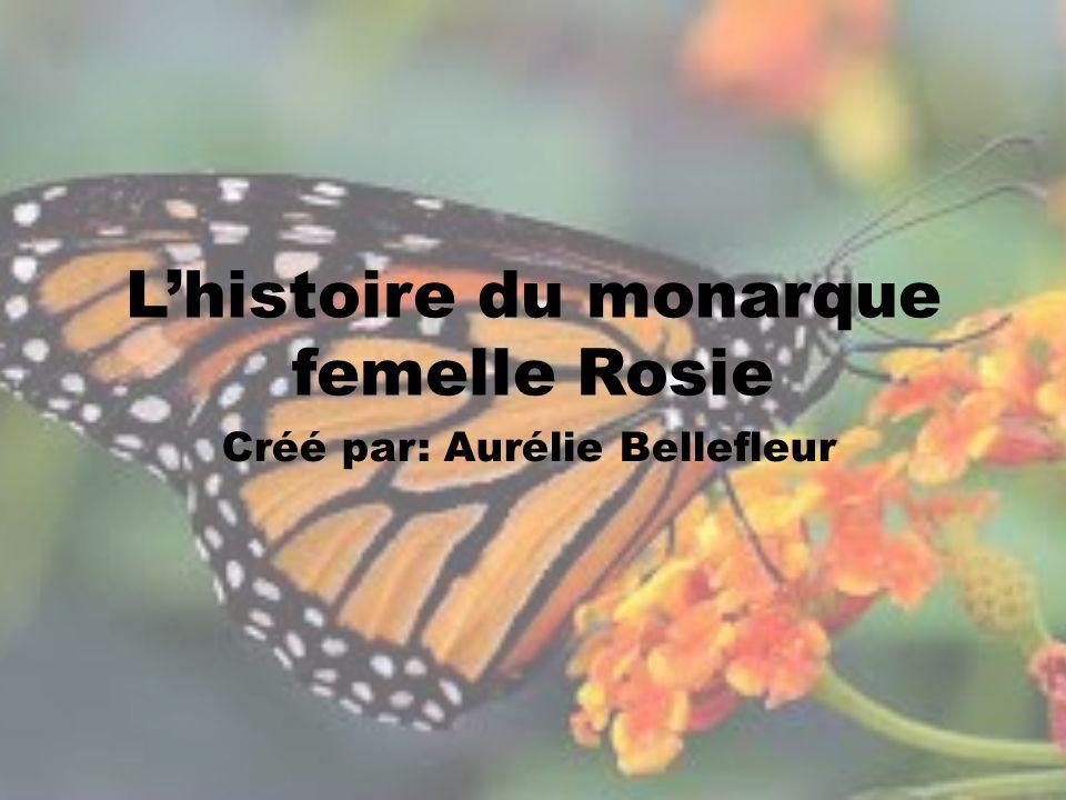 L'histoire du monarque femelle Rosie Créé par: Aurélie Bellefleur