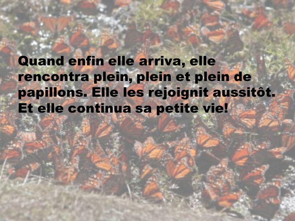 Quand enfin elle arriva, elle rencontra plein, plein et plein de papillons. Elle les rejoignit aussitôt. Et elle continua sa petite vie!