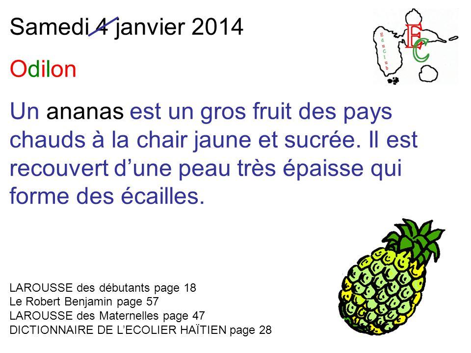 Samedi 4 janvier 2014 Odilon Un ananas est un gros fruit des pays chauds à la chair jaune et sucrée.