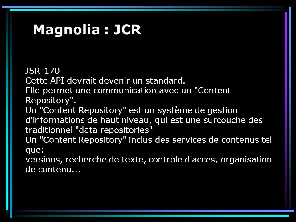 JSR-170 Cette API devrait devenir un standard. Elle permet une communication avec un