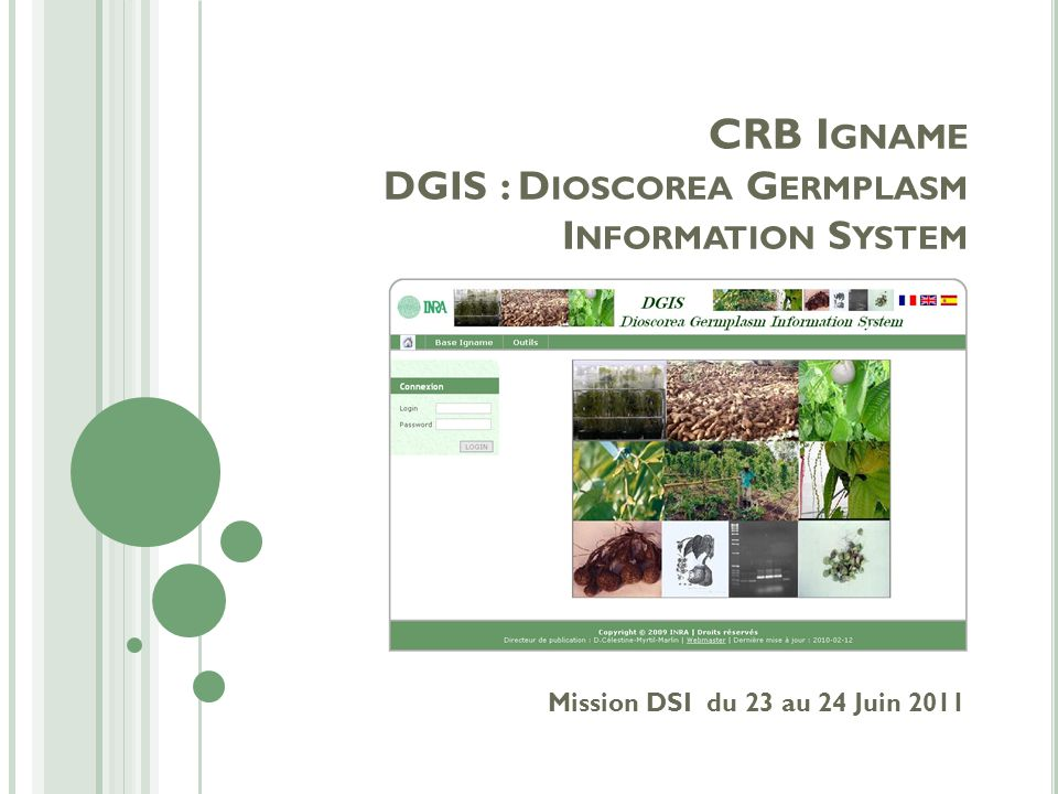 Mission DSI du 23 au 24 Juin 2011 CRB I GNAME DGIS : D IOSCOREA G ERMPLASM I NFORMATION S YSTEM