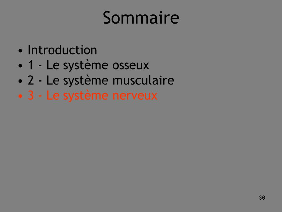 36 Sommaire Introduction 1 - Le système osseux 2 - Le système musculaire 3 - Le système nerveux