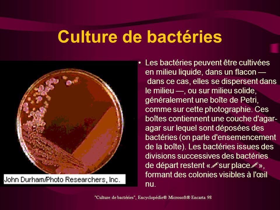Bactérie (méningocoque) Les bactéries Neisseria meningitis, ou méningocoques, sont responsables de la méningite cérébrospinale. Il s'agit de diplocoqu