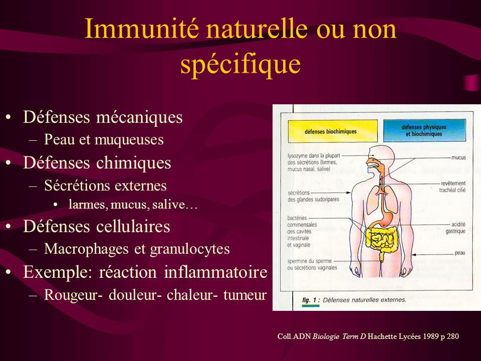 Deux types Immunité naturelle ou non spécifique –Première ligne de défense –Identique quel que soit l'agresseur –Défenses mécaniques, chimiques et cel
