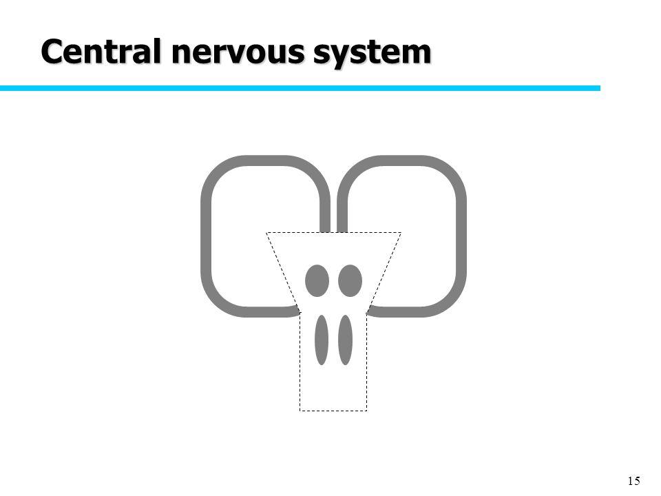 15 Central nervous system