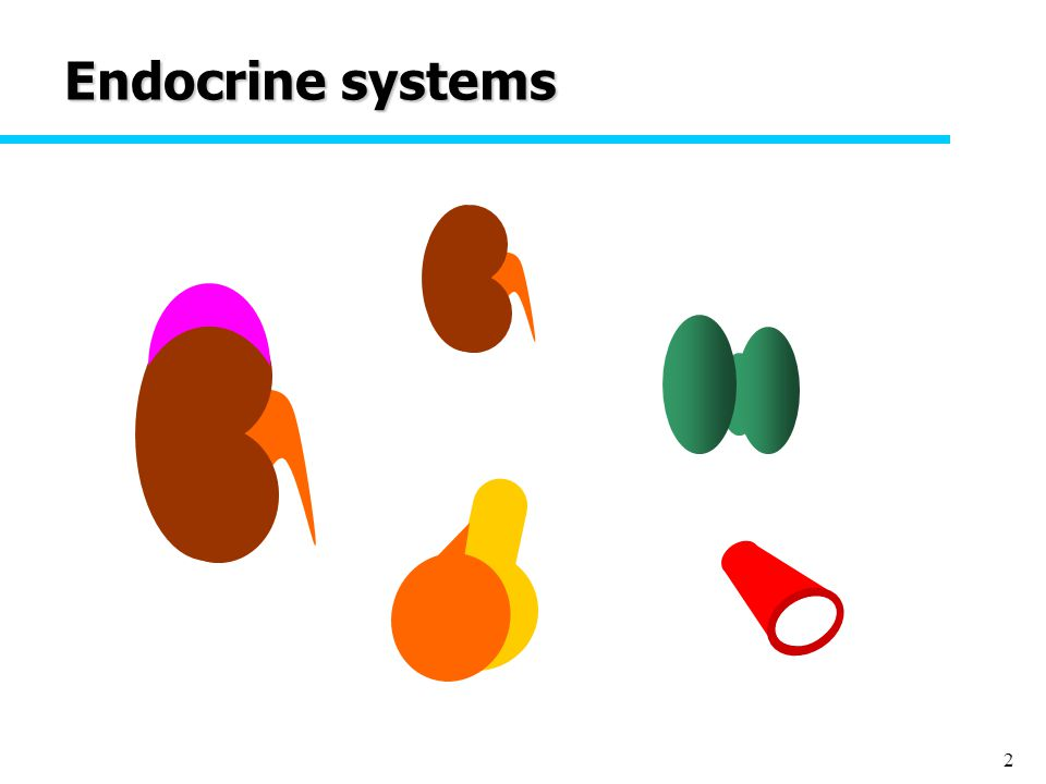 2 Endocrine systems