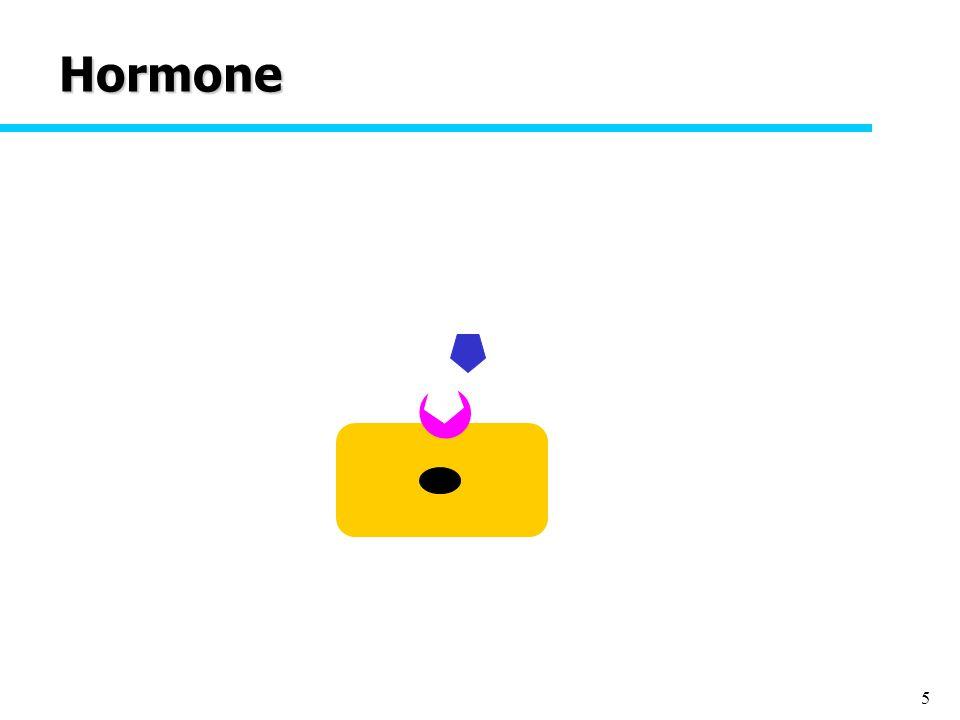 5 Hormone