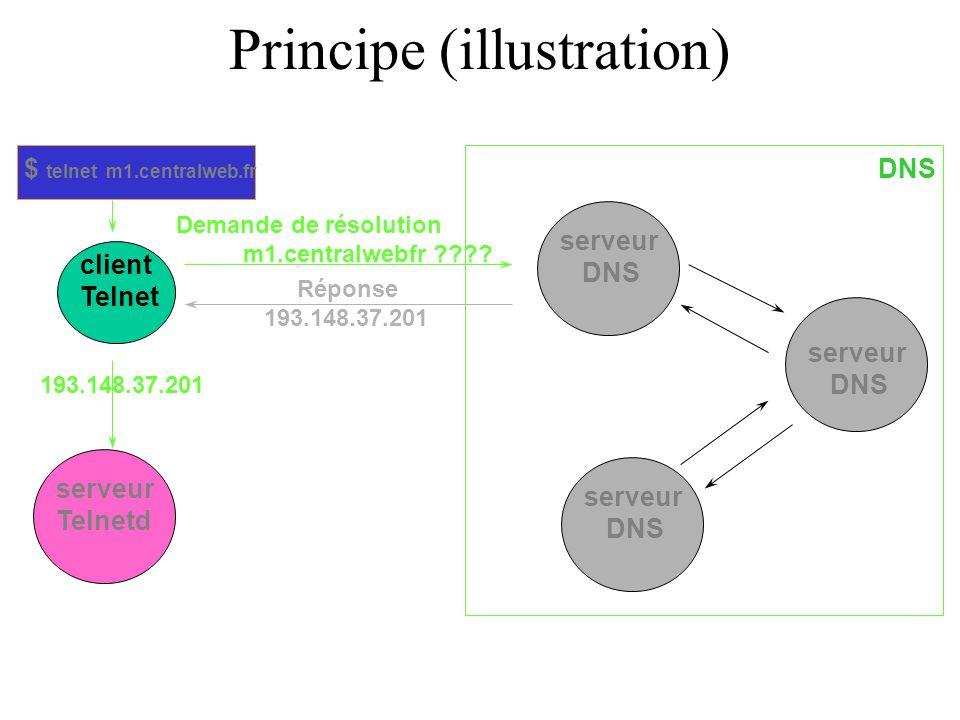 Principe (illustration) client Telnet $ telnet m1.centralweb.fr serveur DNS serveur DNS serveur DNS Demande de résolution m1.centralwebfr .