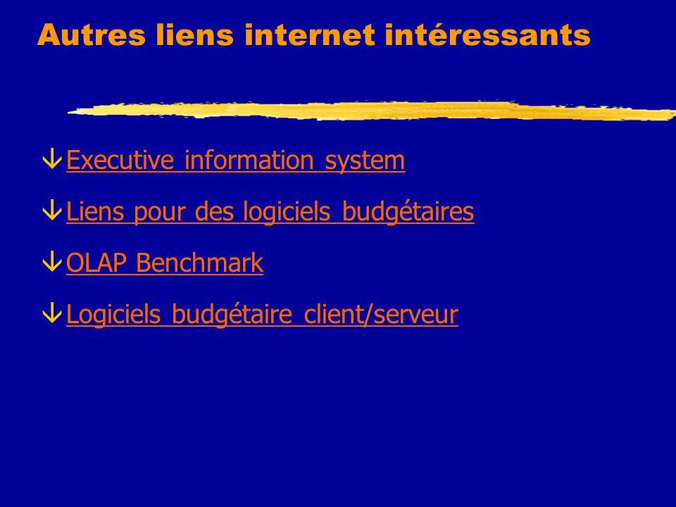 Autres liens internet intéressants âExecutive information systemExecutive information system âLiens pour des logiciels budgétairesLiens pour des logic