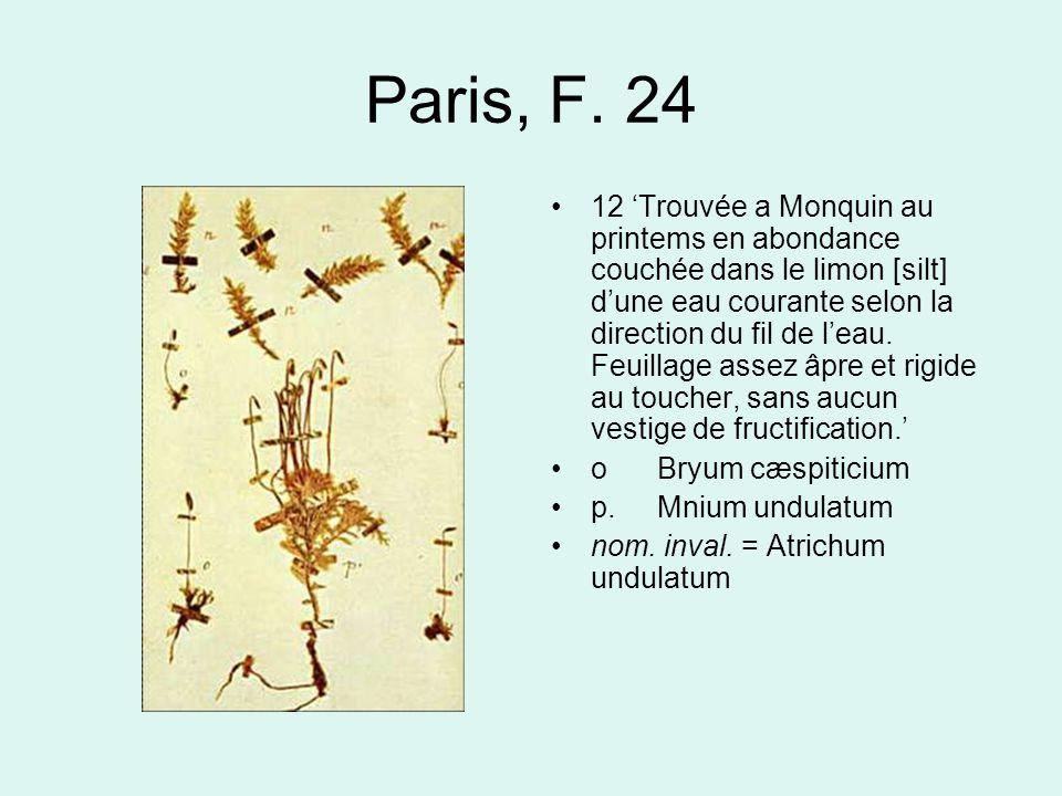 Paris, F. 24 12 'Trouvée a Monquin au printems en abondance couchée dans le limon [silt] d'une eau courante selon la direction du fil de l'eau. Feuill