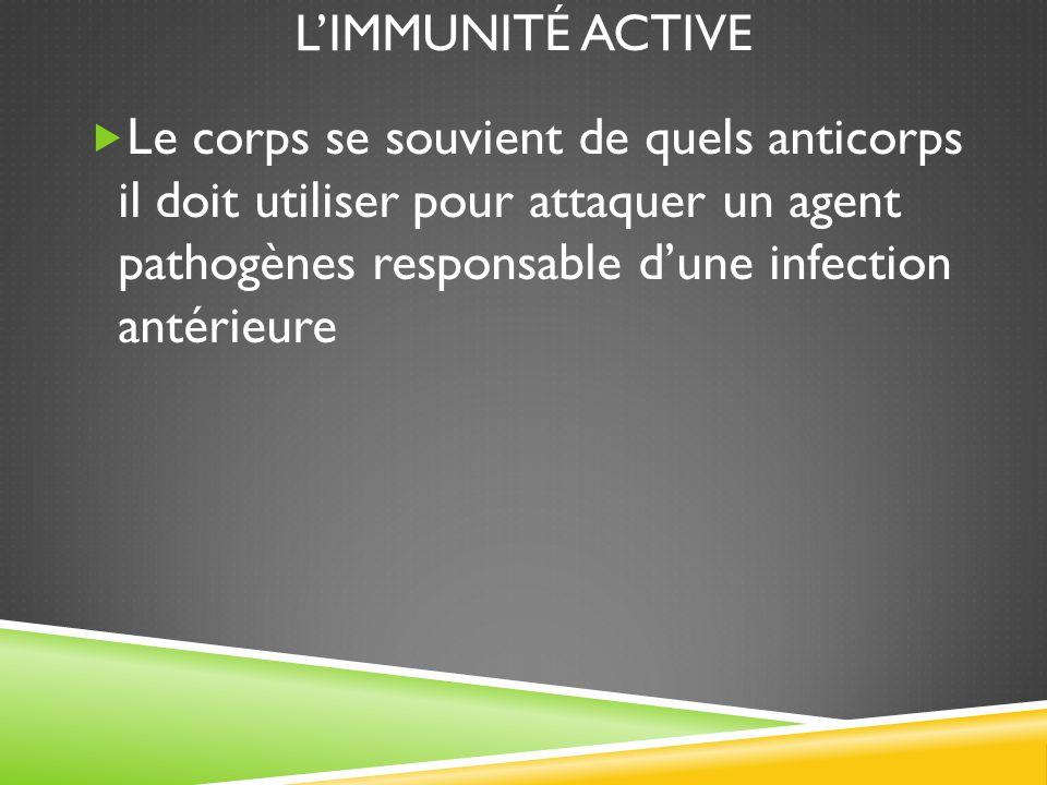 L'IMMUNITÉ ACTIVE  Le corps se souvient de quels anticorps il doit utiliser pour attaquer un agent pathogènes responsable d'une infection antérieure
