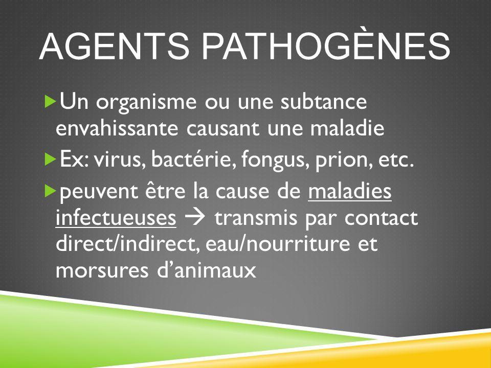 LE SYSTÈME IMMUNITAIRE  Système de l'organisme qui combat l'infection et les substances pathogènes comme les bactéries, les virus et les cellules cancéreuses