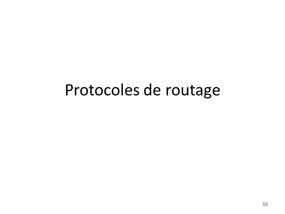 Protocoles de routage 65