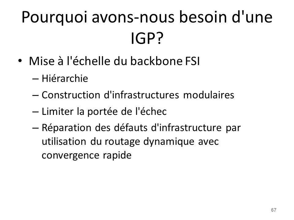 Pourquoi avons-nous besoin d une IGP.