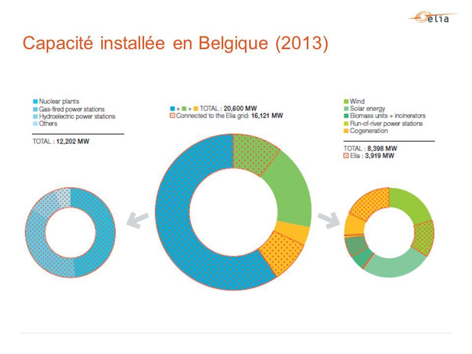 Capacité installée en Belgique (2013)