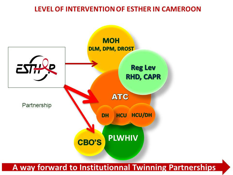 2 - ESTHER logic of intervention 1.Access to care and treatment (Paediatric, STI, OI, E- MTCT,...) 2.Health system strengthening (training of HRH and equipments ) 3.Monitoring and evaluation (support to Health information System : ESOPE) 4.Strategic support and project management : central and intermediate level of the MoH (DDC,RHD) 5.Support to key populations 5