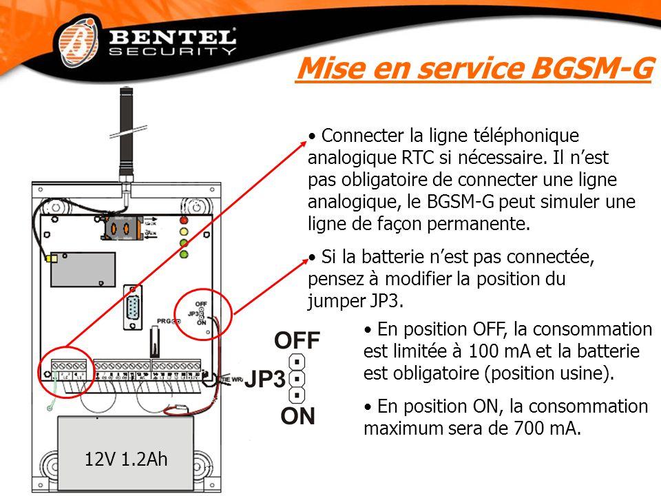 Mise en service BGSM-G Connecter la ligne téléphonique analogique RTC si nécessaire. Il n'est pas obligatoire de connecter une ligne analogique, le BG