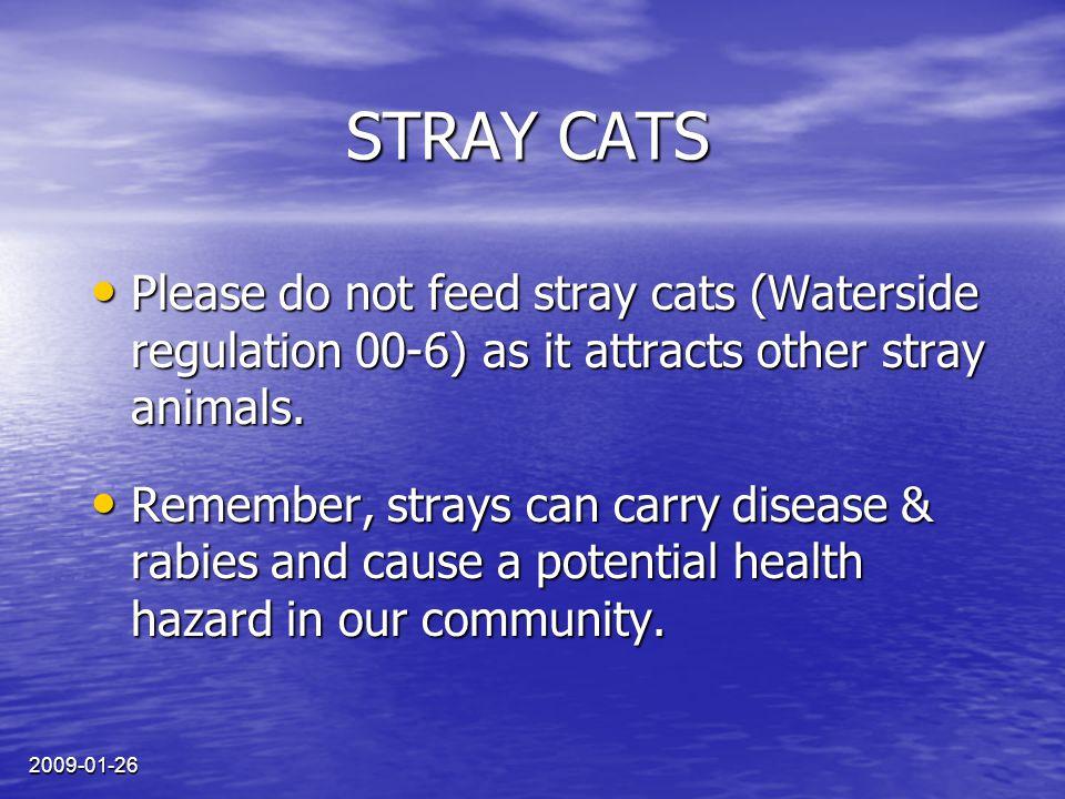 2009-01-26 CHATS ERRANTS Prière de ne pas nourrir les chats errants car ils attirent d'autres animaux sauvages (règlement 00-6 de Waterside).