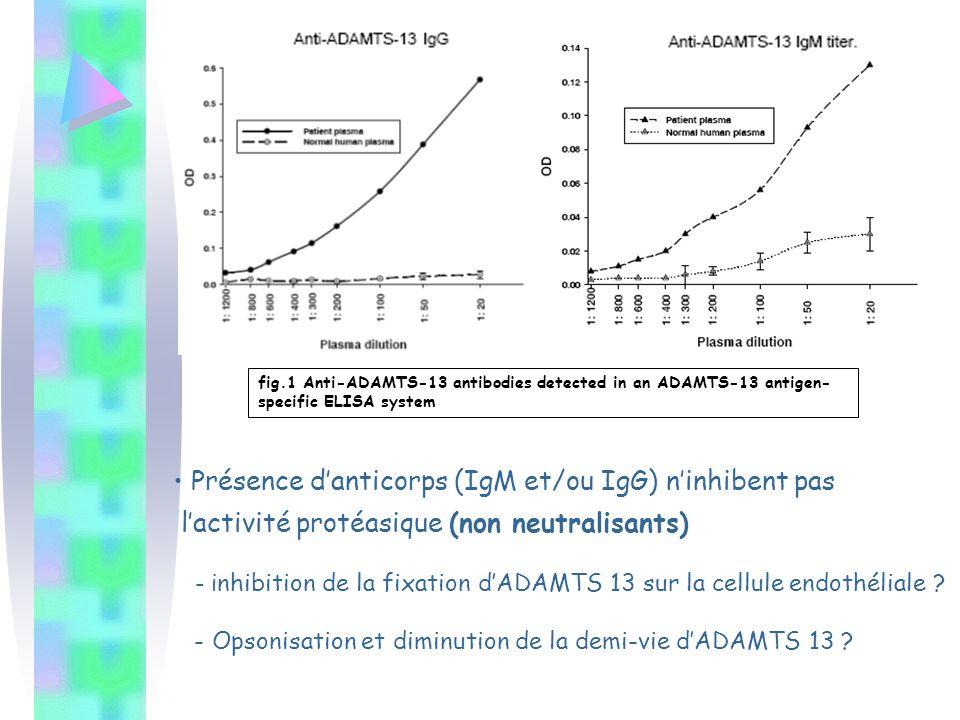Présence d'anticorps (IgM et/ou IgG) n'inhibent pas l'activité protéasique (non neutralisants) - i nhibition de la fixation d'ADAMTS 13 sur la cellule