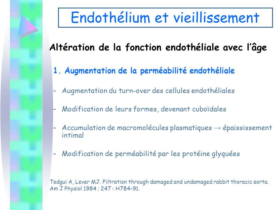 Endothélium et vieillissement Altération de la fonction endothéliale avec l'âge 1. Augmentation de la perméabilité endothéliale –Augmentation du turn-