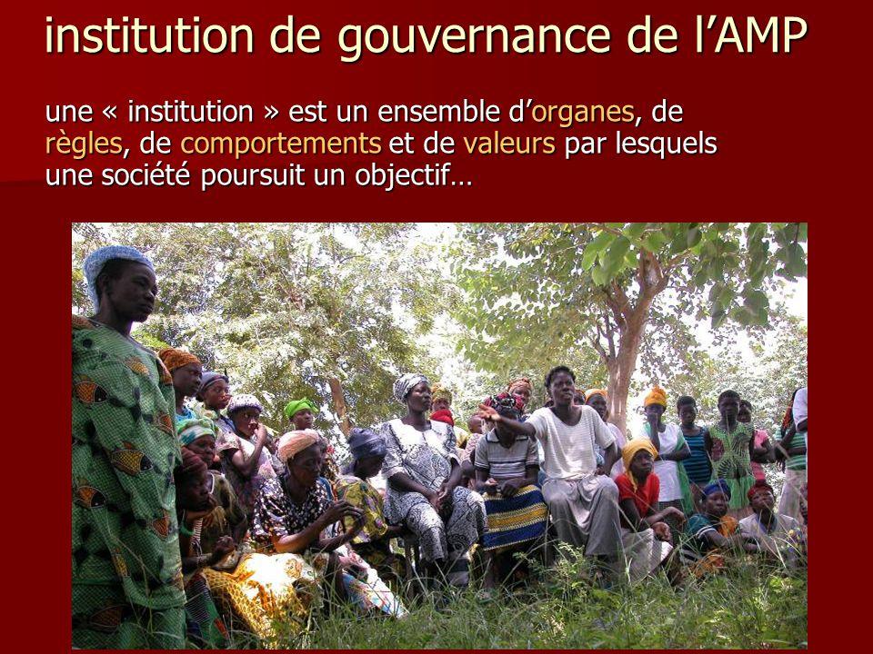 institution de gouvernance de l'AMP une « institution » est un ensemble d'organes, de règles, de comportements et de valeurs par lesquels une société
