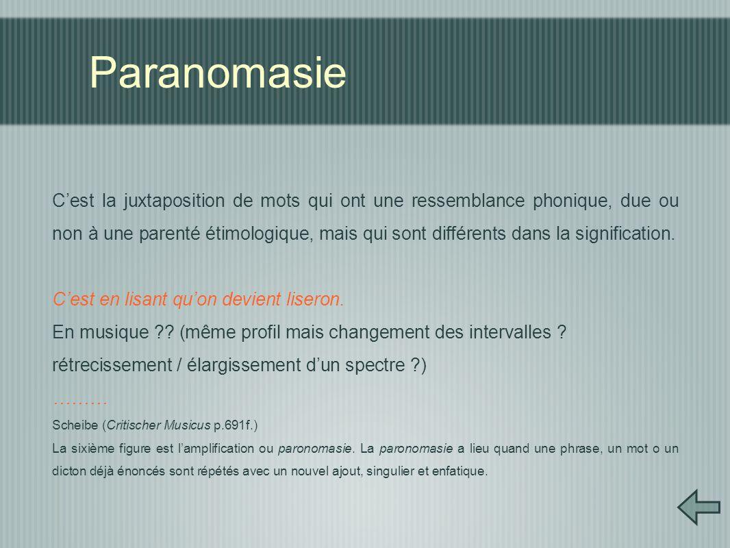 Paranomasie C'est la juxtaposition de mots qui ont une ressemblance phonique, due ou non à une parenté étimologique, mais qui sont différents dans la