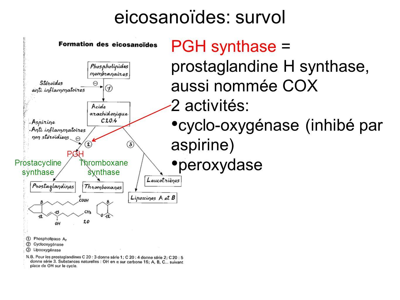 eicosanoïdes: survol PGH synthase = prostaglandine H synthase, aussi nommée COX 2 activités: cyclo-oxygénase (inhibé par aspirine) peroxydase Prostacy