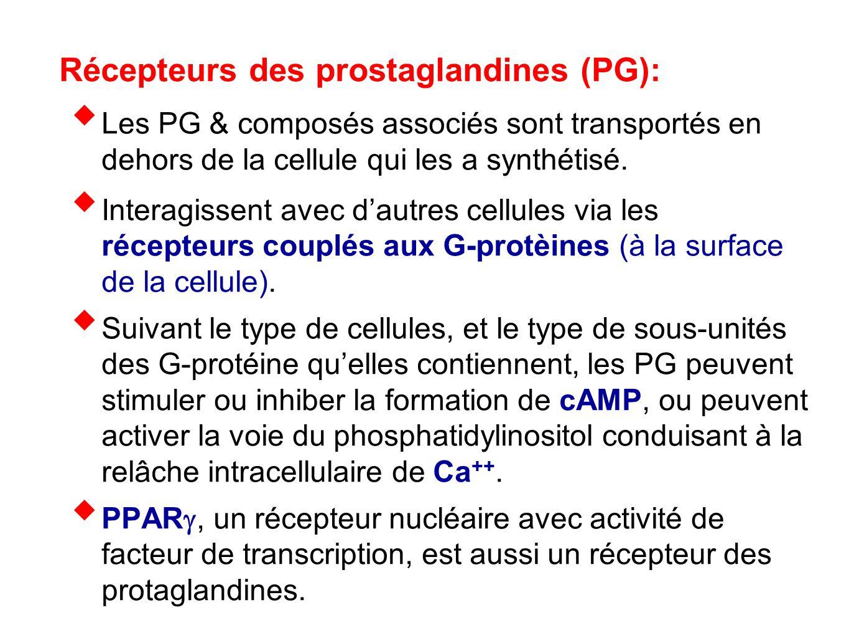 Récepteurs des prostaglandines (PG):  Les PG & composés associés sont transportés en dehors de la cellule qui les a synthétisé.  Interagissent avec