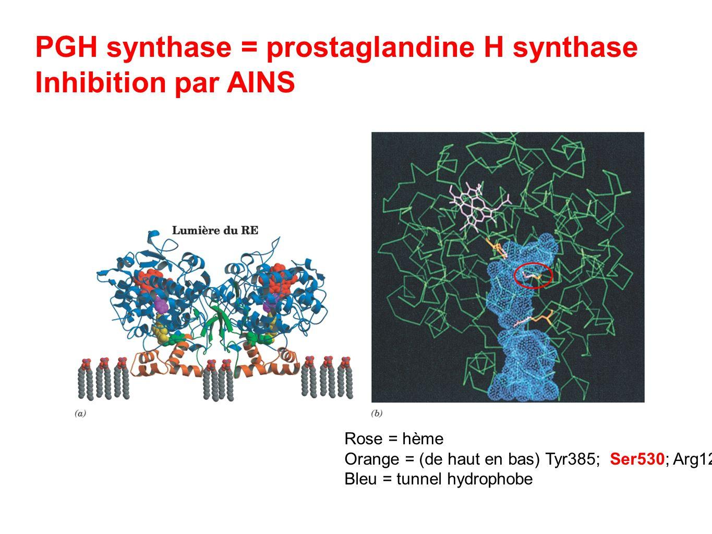 PGH synthase = prostaglandine H synthase Inhibition par AINS Rose = hème Orange = (de haut en bas) Tyr385; Ser530; Arg120 Bleu = tunnel hydrophobe