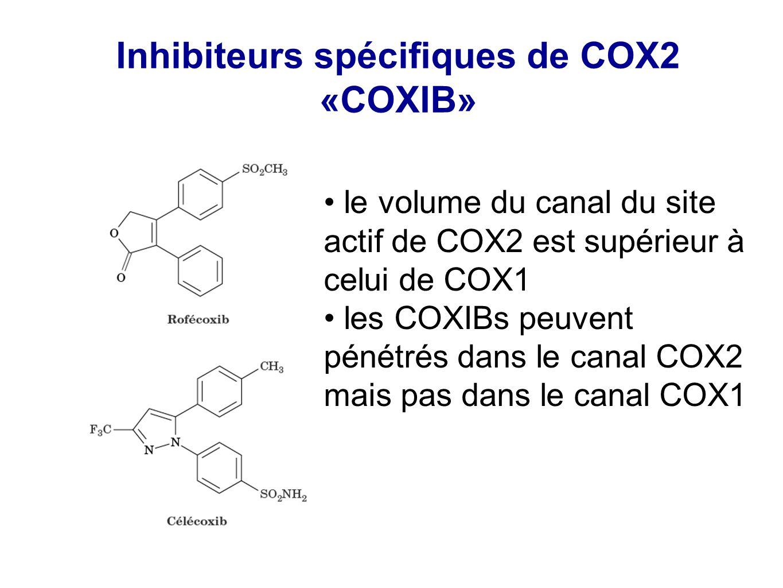 Inhibiteurs spécifiques de COX2 «COXIB» le volume du canal du site actif de COX2 est supérieur à celui de COX1 les COXIBs peuvent pénétrés dans le can