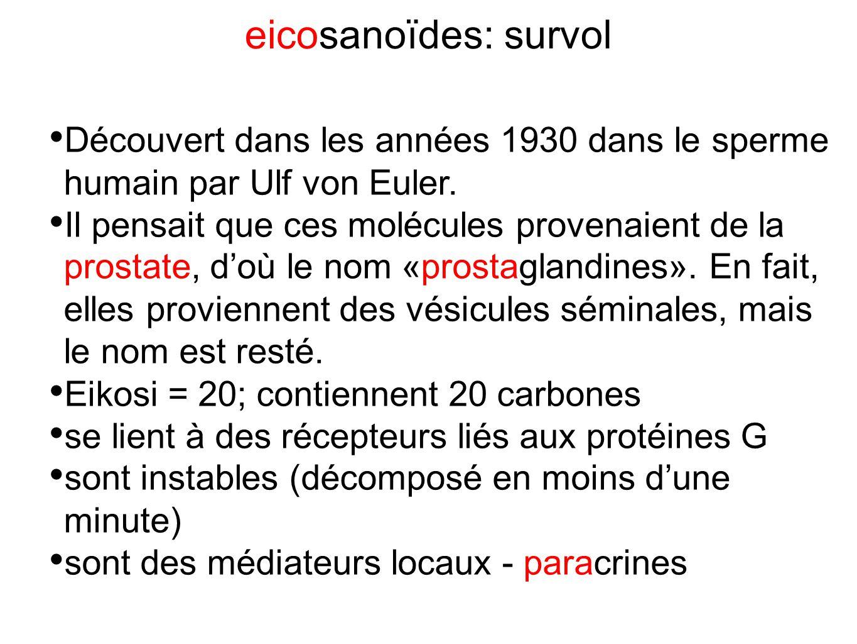 eicosanoïdes: survol Découvert dans les années 1930 dans le sperme humain par Ulf von Euler. Il pensait que ces molécules provenaient de la prostate,